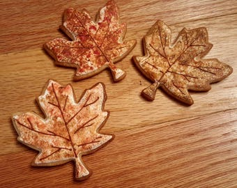 Autumn Leaves Royal Icing Cookies