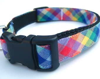 """Cheeky Check Collar, 3/4"""" wide, available in S, M, L"""