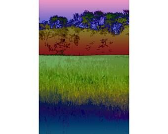 Hayfield 3 - landscape photography