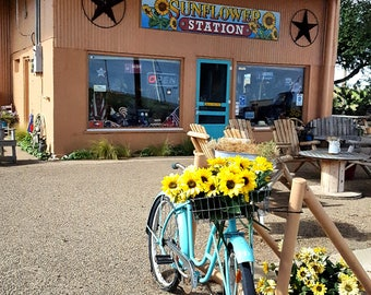 Route 66 Sunflower Station Adrian Texas