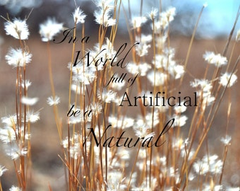 In a World full of Artificial be a Natural, Inspirational Quote Country Photography