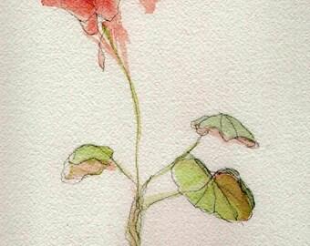 watercolor, geranium, leaf, card, blank card, print from original