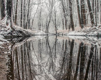 Oak Openings Winter Reflections - Print