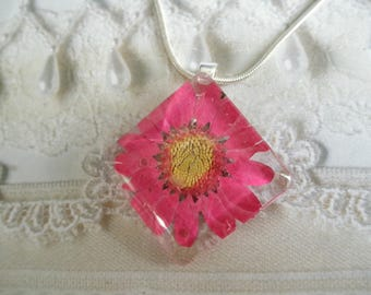 Hot Pink Daisy Domed Diamond Shaped Pressed Flower Pendant-April's Birth Flower-Symbolizes Loyal Love-Nature's Wearable Art-Gifts Under 26