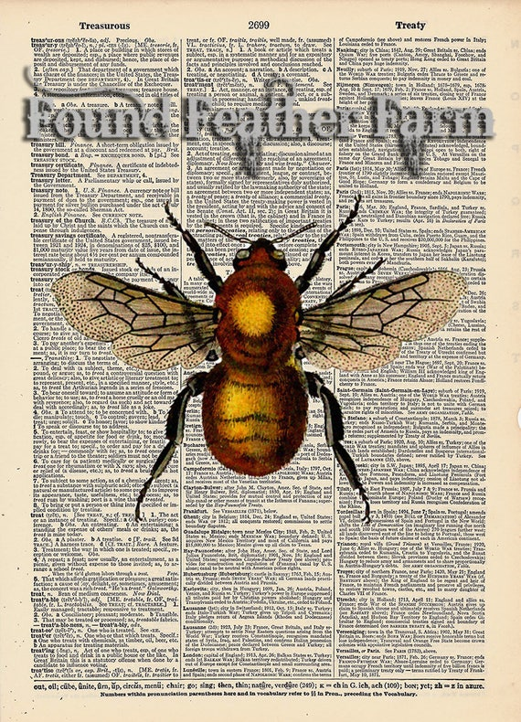 """Vintage Antique Dictionary Page with Antique Print """"Honey Bee"""""""