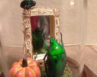 """Beetle Art """"What am I going to wear!?"""""""
