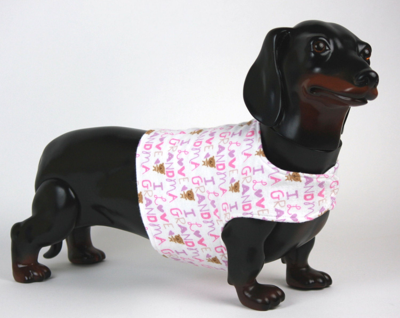 Nice Gest Hundemantel Muster Kostenlos Frieze - Decke Stricken ...