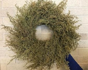 "18"" Sweet Annie Wreath"