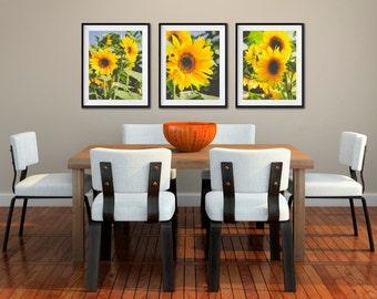 Sunflowers, Sunflower Art, Floral Prints, Yellow Sunflowers Photos, Nature Photography, Kitchen Art Yellow Flowers, Set of 3 Fine Art Prints