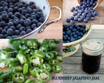 Jam Blueberry Jalapeno Pepper 8 oz homemade