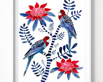 Crimson Rosellas & Waratah Flowers, Large A2 Signed L/E Fine Art Giclée Print. Botanical, Birds, Australian, Indigo, Tree, Stripes
