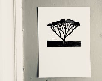 linoprint, blockprint, artprint, linocut print, 9x12, handprinted, handpulled, handcarved, tree, acacia tree, illustration