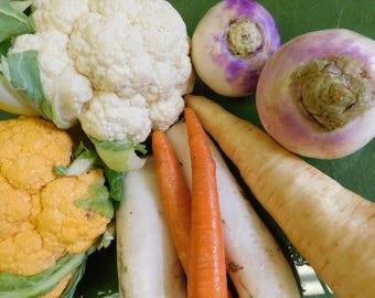 Vegetable art, Kitchen Art, mini art, tiny art, vegetable prints, veggie love block 103