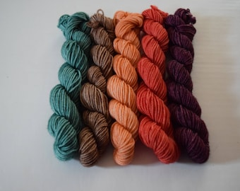 Hello Fall - Mini Skeins - Mini Skein Set - Set of 5 - Hand dyed yarn - Indie Dyed Yarn - DK Yarn - DK Mini Skein Set - Autumn/Fall Yarn