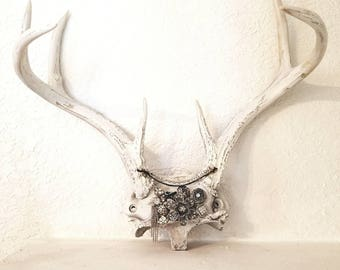 On Sale Faux Antler Wall Decor / Faux Taxidermied / Faux Antlers / Deer  Antler Hook