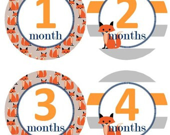 Baby Monthly Milestone Growth Stickers Fox Orange Grey Stripes Navy Nursery Theme MS529 Baby Shower Gift Baby Photo Prop
