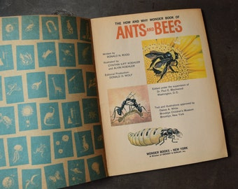 Vintage Children's Book. Ants & Bees. Soft Cover. 1960s Science Nature. Text, Retro Art. How and Why Wonder Book. Save the Bees Education