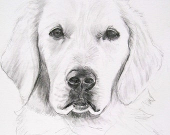 Dog Portrait Custom Sketch