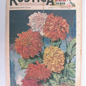 1948, French review, RUSTICA, Plant dahlias, antique French flower illustration, Dahlias