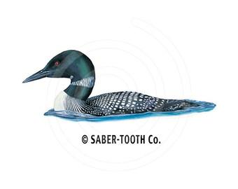 Loon Bird Decal Sticker