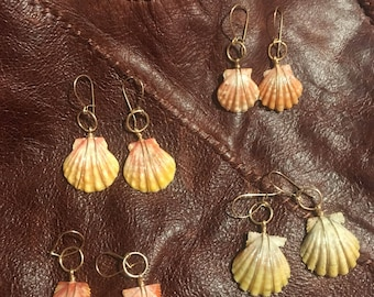 Real hawaiian sunrise shell earrings on gold