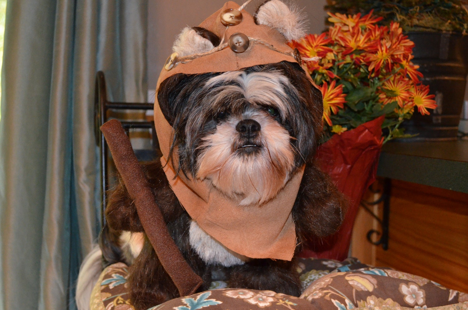 & Furry Brown Woodland Bear Dog Halloween Costume with Hood