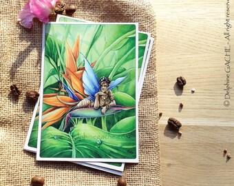 Carte postale thème féerique - Tropicale - Illustration Delphine GACHE