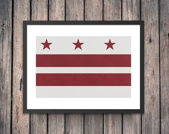 Washington DC Flag Art Print