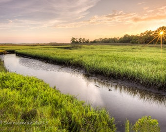 Coastal Florida Landscape - Late Afternoon on the Marsh