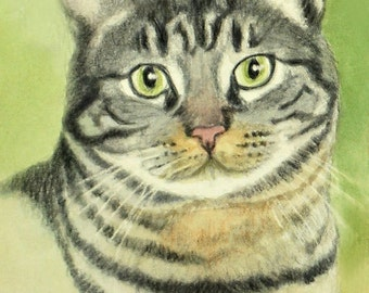 Tabby Cat Art, Tabby Cat Print, Tabby Art, Cat Art, Cat Watercolor, Cat Art Print from Watercolor with Colored Pencil Painting by P. Tarlow