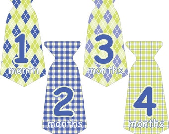 12 Pre-cut Monthly Baby Milestone Waterproof Glossy Stickers - Neck Tie Shape - Design T006-02