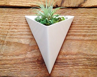 Wall planters etsy modern triangular indooroutdoor succulent floating wall planter white powder coated finish workwithnaturefo