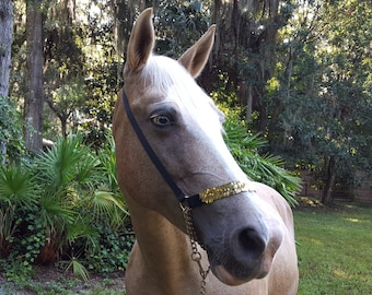 Sequin Show Halter in Silver, Red, or Gold - Equine Tack Jewelry for Arabian Horse