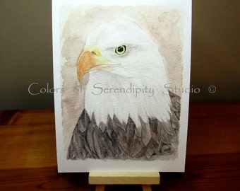 Bald Eagle - 5x7 or 8x10 Giclee Watercolor Painting Bird Print
