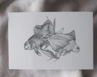 Goldfish Drawing, Goldfish Art, A Pair of Goldfish Illustration, Fish Postcard, Fish Art, Black and White Art, Two Goldfish, Print, A6 Size