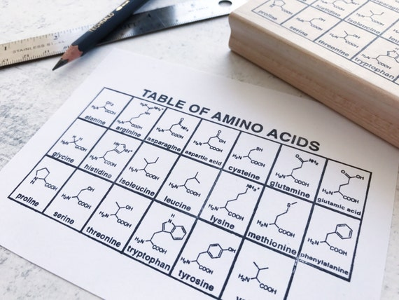 The Amino Acid Chemistry Chart Rubber Stamp TeacherS
