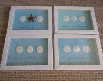 Coastal WORD Art with Sand Dollar or Sea Biscuit Shells and Bible Verse Aqua Blue and White - Come to Me, Be Still