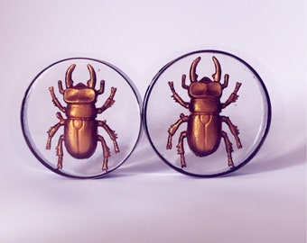 50mm Gold painted bettle bug plugs!
