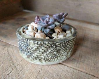 Handmade ceramic planter, succulent pot, cactus pot