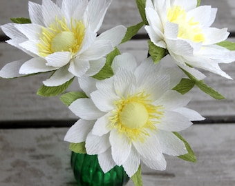 lily flower,pond lily-paper lily-paper flowers