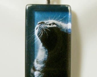 Cat in shadow glass pendant and chain - CGP12-074