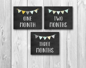 Baby's first year, chalkboard signs, monthly photo prop, bundle set, instant download