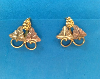 Vintage! Tri color gold fill grapes & leaves screw on earrings.