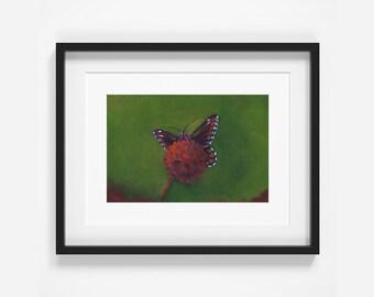Butterfly, Original Art, Oil Painting, Home Decor