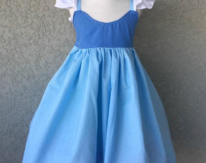 Cinderella Inspired Hummingbird Dress