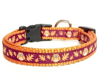 """Thanksgiving - Owl - Fun - Fall - Tiny  Teacup - Dog Collar - Cat Collar - Halloween - 3/8"""" 5/8"""""""