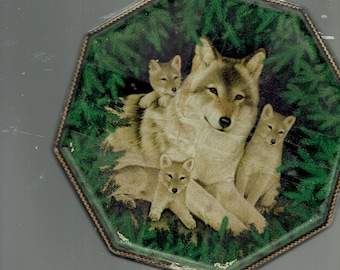 this is a covered tin of alaska and the timber wolves.
