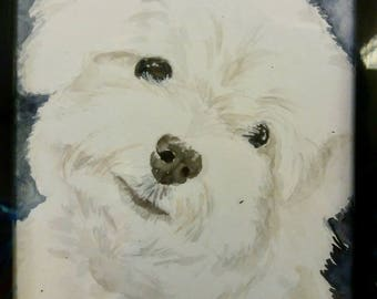 Custom Pet Portraits [watercolour]