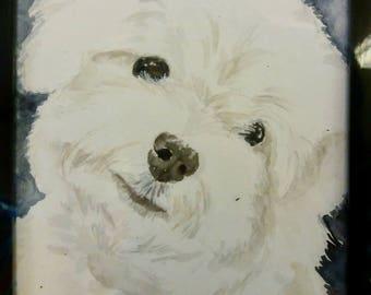 Custom Pet Portraits [watercolour]