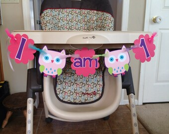 Owl theme first birthday, I am one highchair banner, I am one owl banner, look whoo's one, owl first birthday decorations